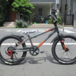 "<span class=""title"">ides   D-BIKE EXSTREET(ディーバイク エクストリート) ジュニアバイク </span>"