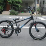 ides   D-BIKE EXSTREET(ディーバイク エクストリート) ジュニアバイク